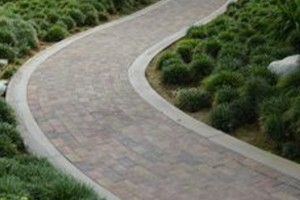Paths & Paving in Shirley